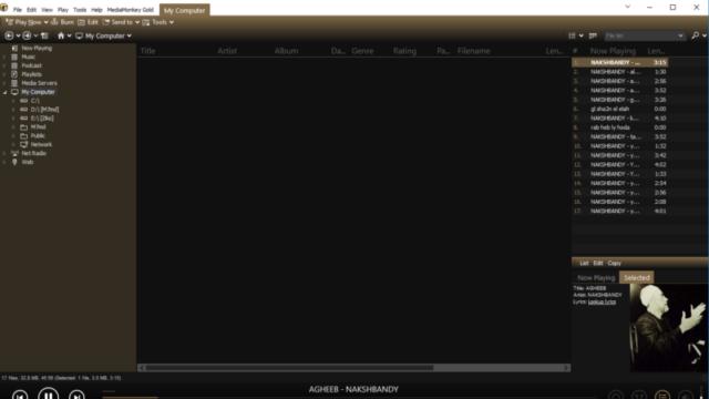 MediaMonkey for Windows 10 Screenshot 2
