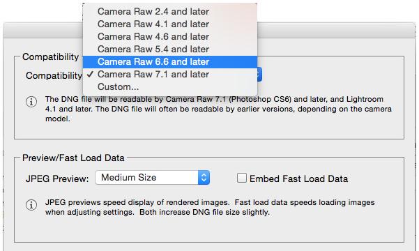 Adobe DNG Converter for Windows 10 Screenshot 2