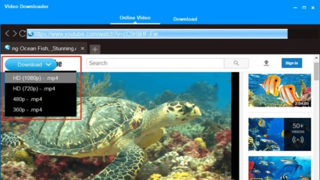 DVDFab YouTube Video Downloader for Windows 10 Screenshot 1