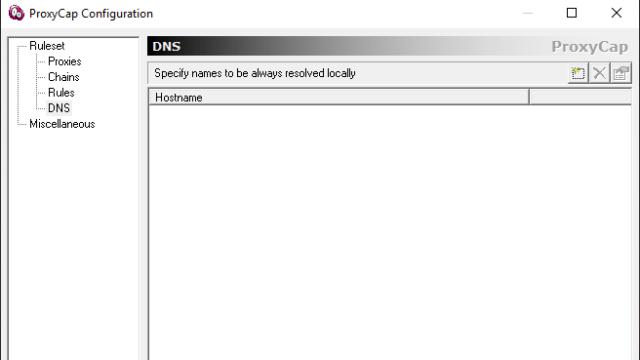 ProxyCap for Windows 10 Screenshot 2